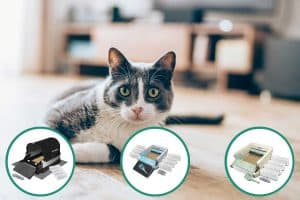 Is the Littermaid Self-Cleaning Litter Box a Good Option for You?