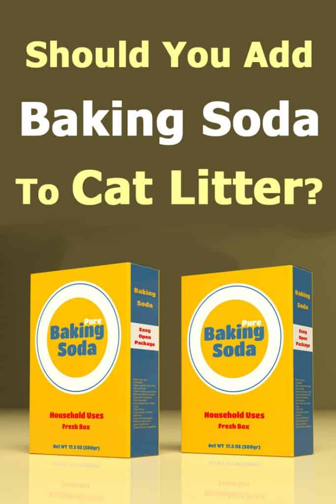 Should You Add Baking Soda to Cat Litter?