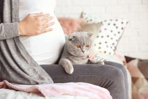 Read more about the article Is It Safe to Clean a Litter Box While Pregnant?