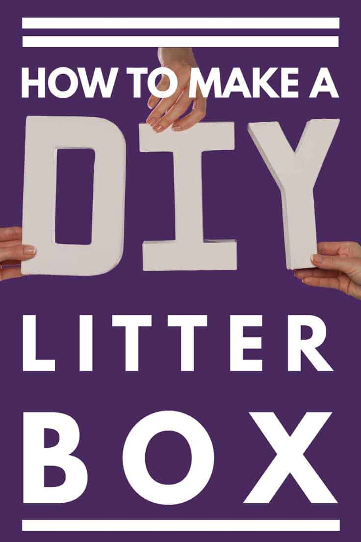 How to Make a DIY Litter Box