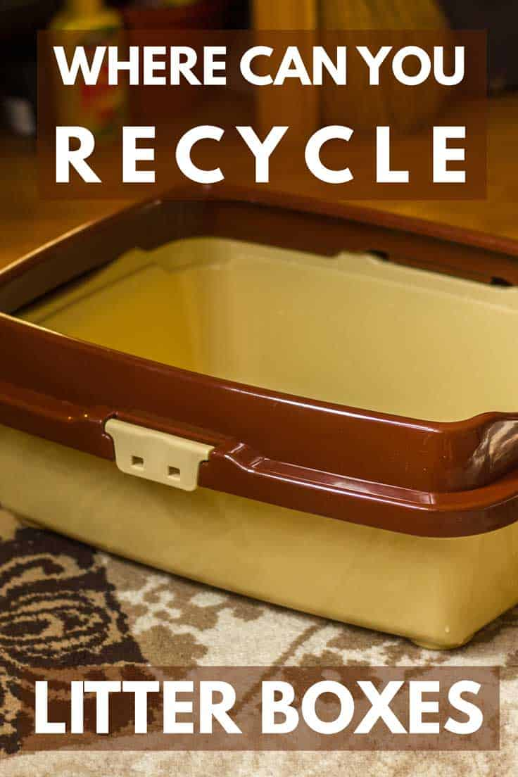 Where Can You Recycle Litter Boxes