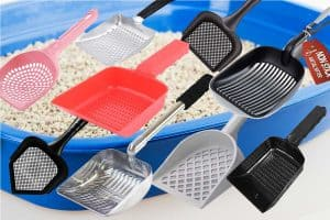 9 Cat Litter Scoops with Small Holes (That Could Be the Solution to Your Litter Troubles!)