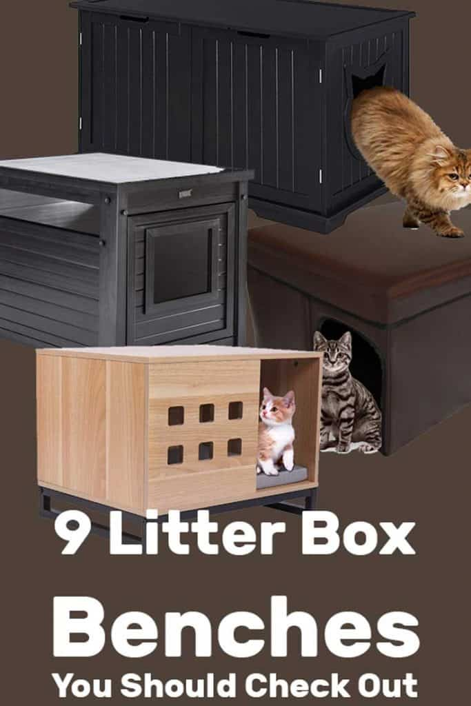 Miraculous 9 Litter Box Benches You Should Check Out Litter Boxes Com Inzonedesignstudio Interior Chair Design Inzonedesignstudiocom