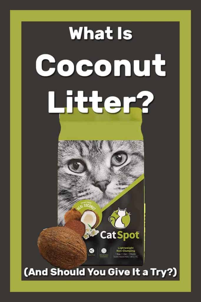 What Is Coconut Litter? (And Should You Give It a Try?)