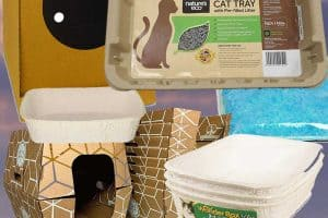 Top 10 Disposable Litter Boxes (And Should You Try Any of Them?)