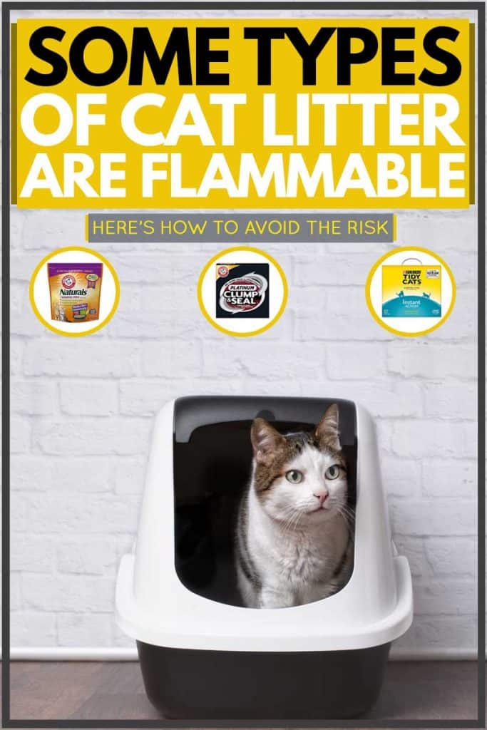 Cat sitting inside of litter box while looking at something, Some Types of Cat Litter are Flammable [Here's how to avoid the risk]