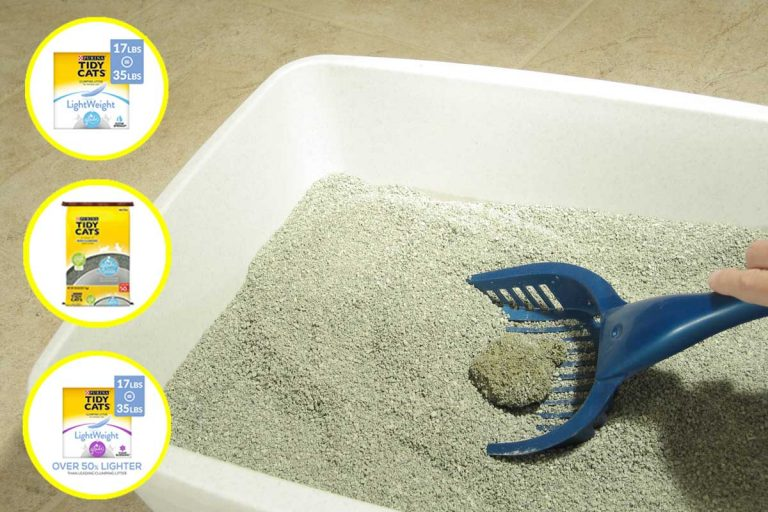 Cat Litter with Glade? Check out these novel products!