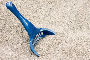 Read more about the article How Much Litter Should You Put In A Litter Box?