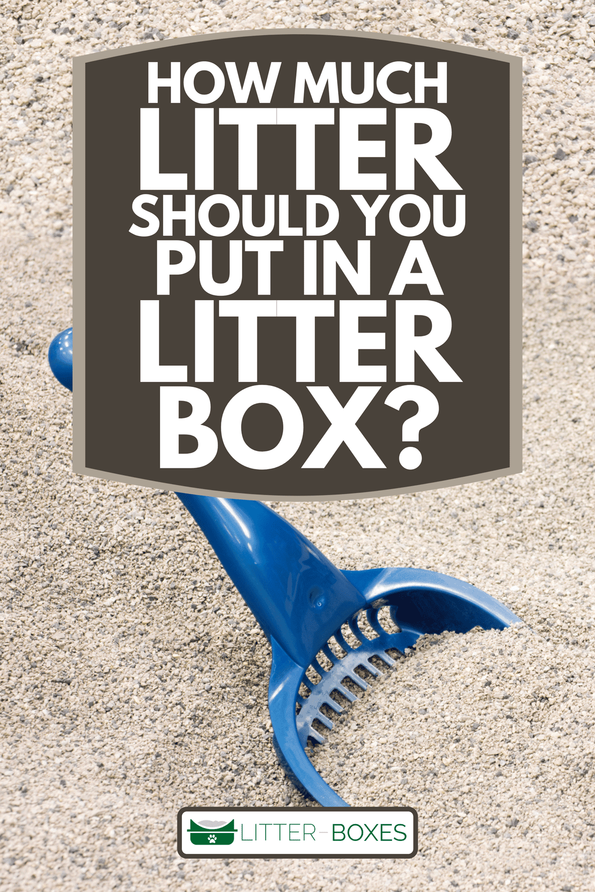 A blue scoop sits in a box of clean cat litter, How Much Litter Should You Put In A Litter Box?