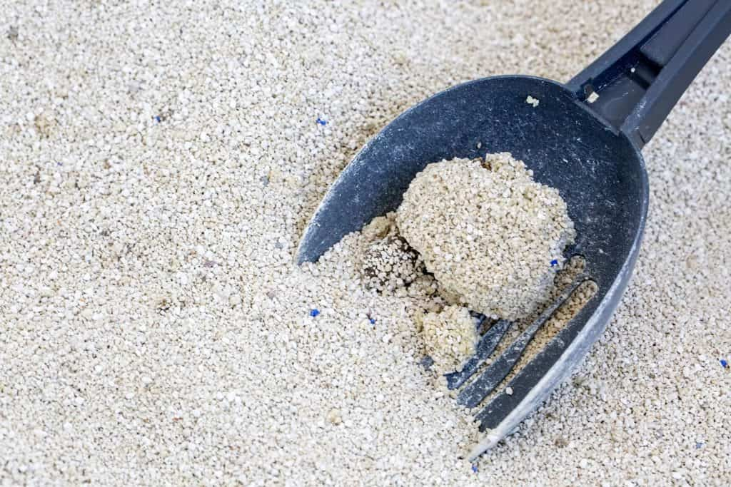 Clumping cat litter being scooped using a black scooper
