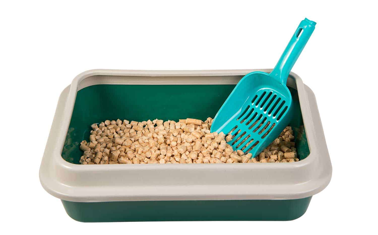 Green toilet tray for cat with wood pellets and scoop isolated on white