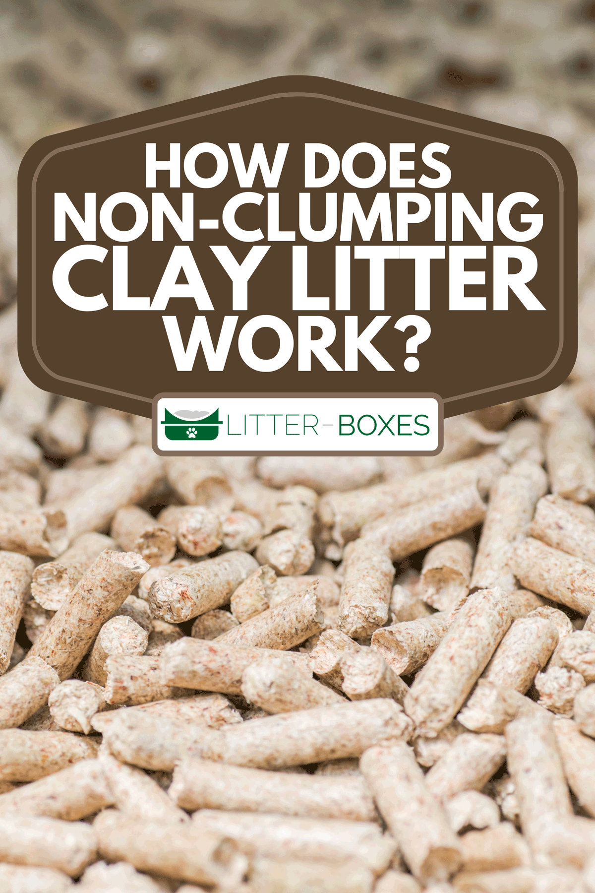 A close up of wooden pellets, How Does Non-Clumping Clay Litter Work?